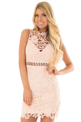 Blush Sleeveless Dress with Lining and Sheer Details front close up