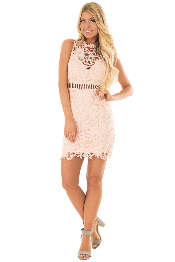 Blush Sleeveless Dress with Lining and Sheer Details front full body