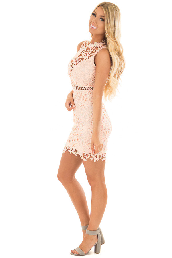 Blush Sleeveless Dress with Lining and Sheer Details side full body