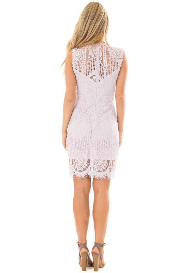 Lavender Fitted Lace Dress with Sheer Details back full body