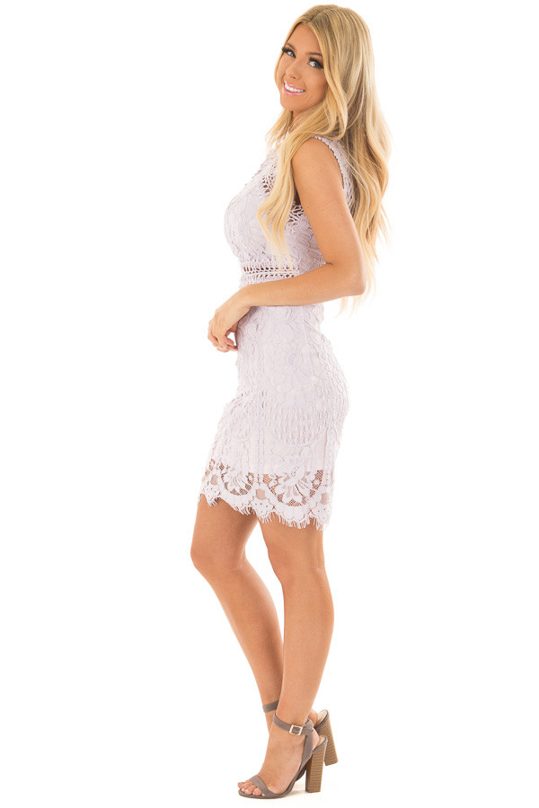 Lavender Fitted Lace Dress with Sheer Details side full body