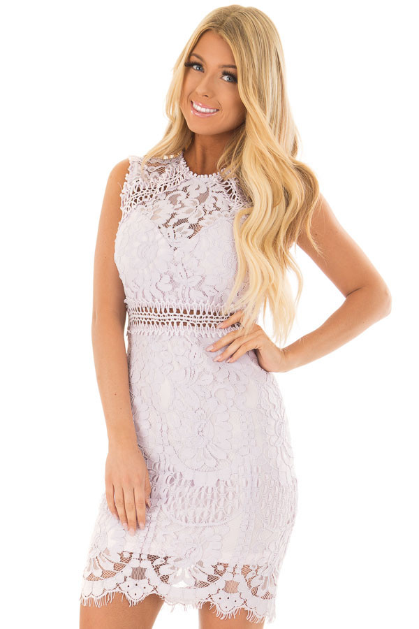 Lavender Fitted Lace Dress with Sheer Details front close up