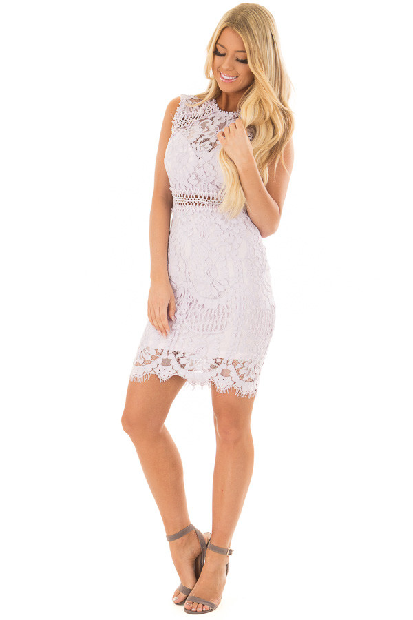 Lavender Fitted Lace Dress with Sheer Details front full body