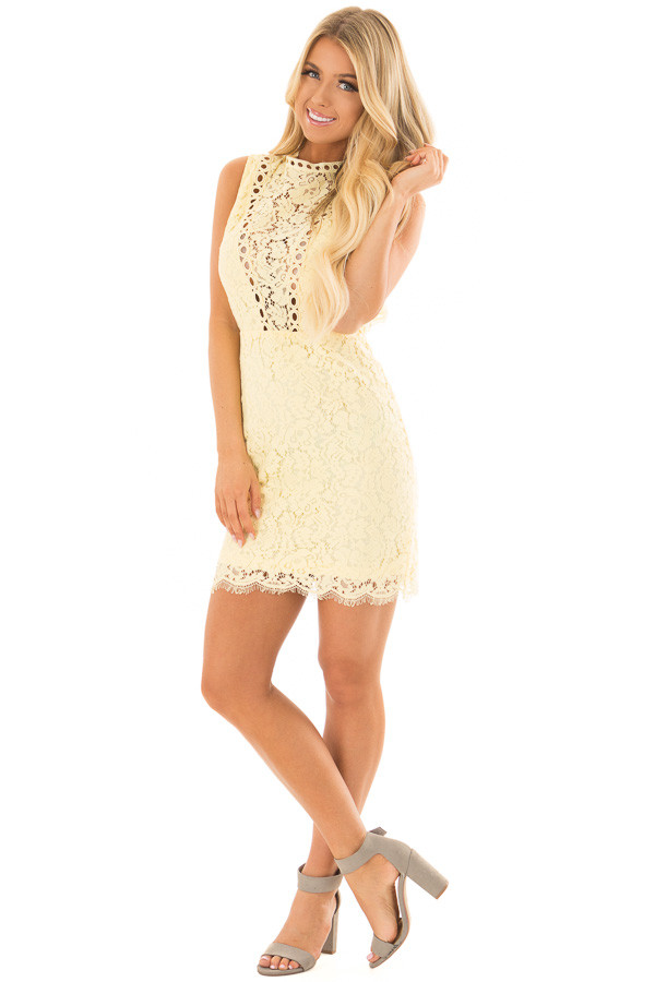 Light Yellow Sleeveless Lace Dress with Sheer Details front full body