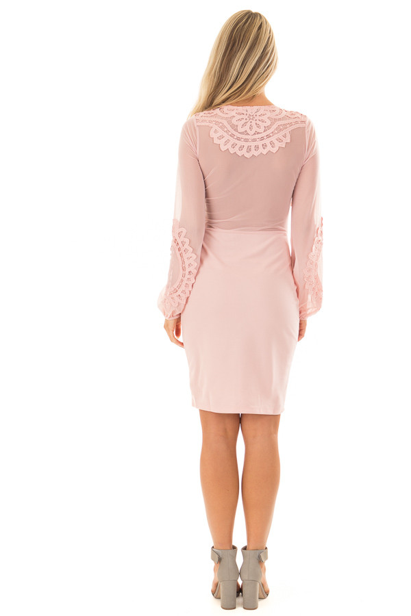 Blush Crochet Detail Mini Dress with Sheer Back back full body