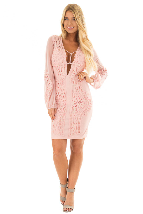 Blush Crochet Detail Mini Dress with Sheer Back front full body