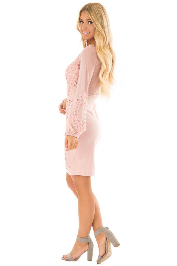 Blush Crochet Detail Mini Dress with Sheer Back side full body