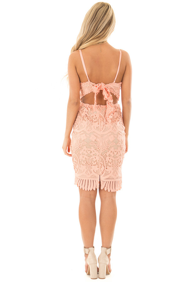 Blush Fitted Spaghetti Strap Lace Dress with Open Back back full body
