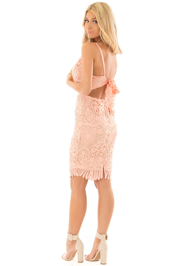 Blush Fitted Spaghetti Strap Lace Dress with Open Back side full body