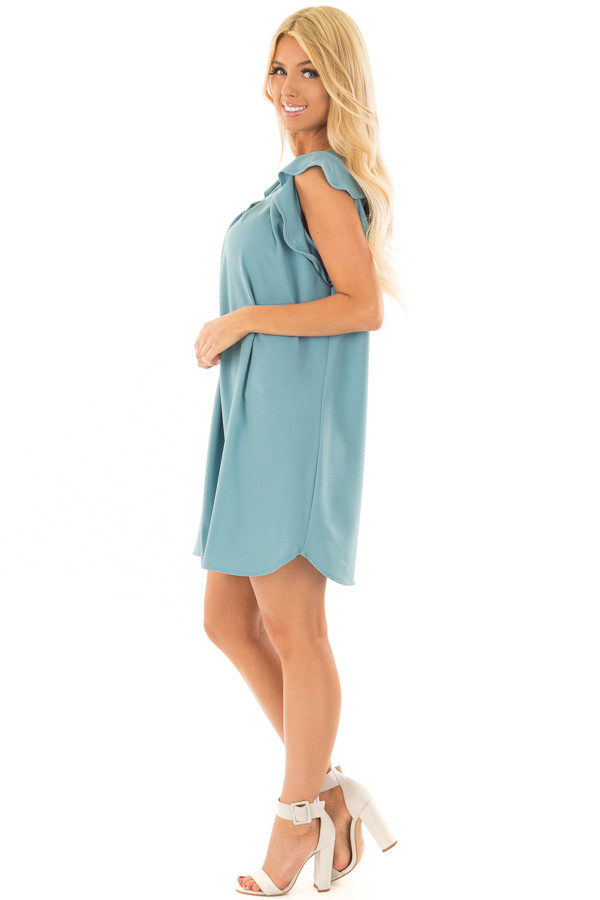 Sky Blue Dress with Ruffle Sleeves side full body