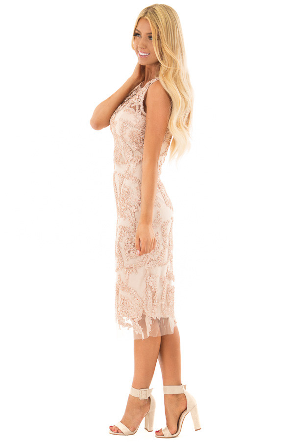 Light Nude Embroidered Fitted Dress side full body
