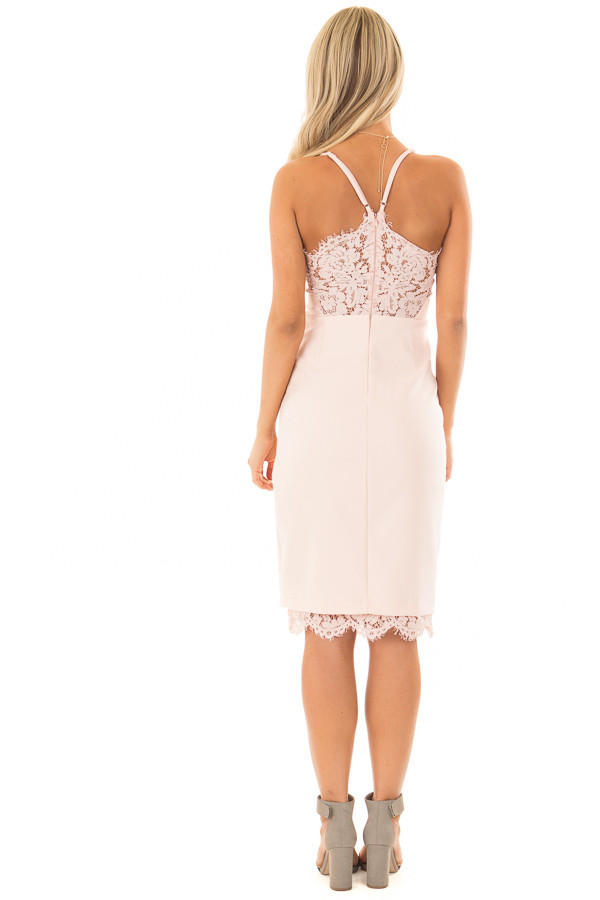 Blush Fitted Dress with Lace Details back full body