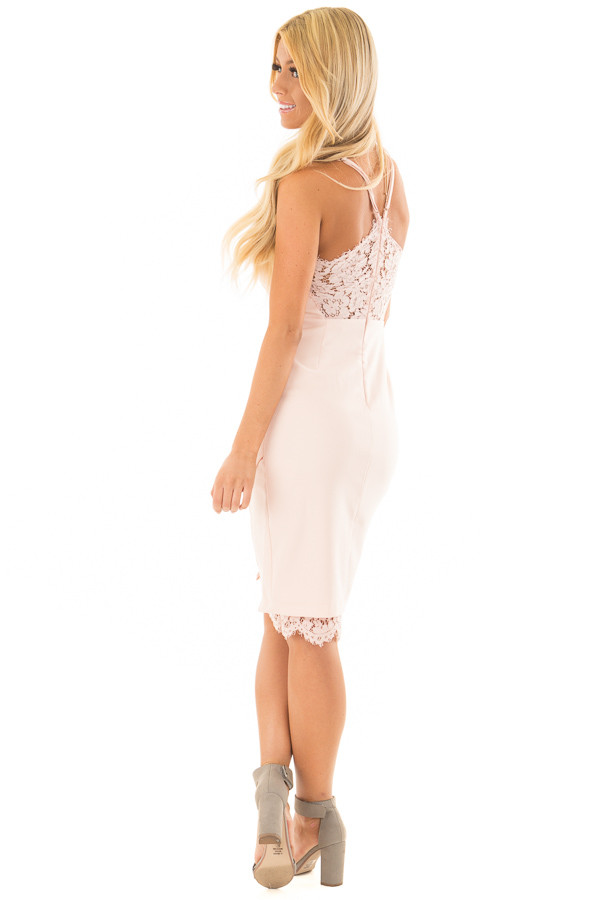 Blush Fitted Dress with Lace Details back side full body