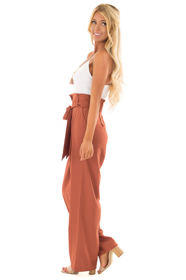 Bronze Jumpsuit with Waist Tie and Side Pockets side full body