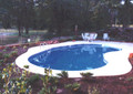 Kidney In Ground Swimming Pool