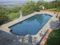 Single Roman End In Ground Swimming Pool