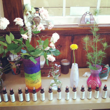 Flower Essences Workshop