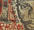 Sizzla kalonji : Radical CD