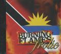 Burning Flames : Frolic CD