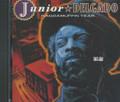 Junior Delgado : Raggamuffin Year CD