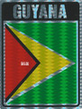 Guyana - Flag : Sticker