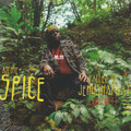 Richie Spice : Valley Of Jehoshaphat (Red Hot) 7""