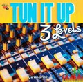 Tun It Up 3 Levels...Various Artist CD