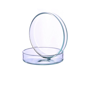 90mm Petri Dish