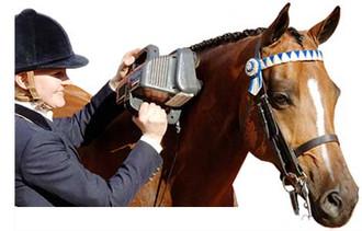 Thumper Equine Pro Horse Massager|thumper, massager,equine pro, horse massager