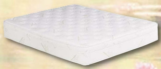 Essex Shallow Fill 10 inch softside waterbed mattress