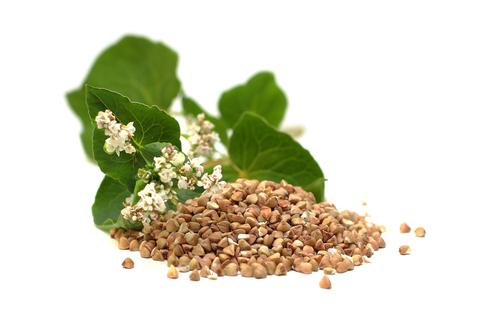 buckwheat-seeds.jpg