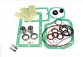 Major Repair Kit for Busch 0160/0160B  W/filters