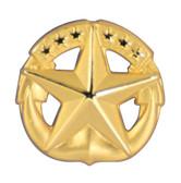 Navy Command at Sea Badge Lapel Pin