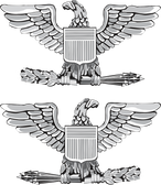 US Navy Captain Decal