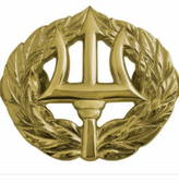 Command Ashore Badge