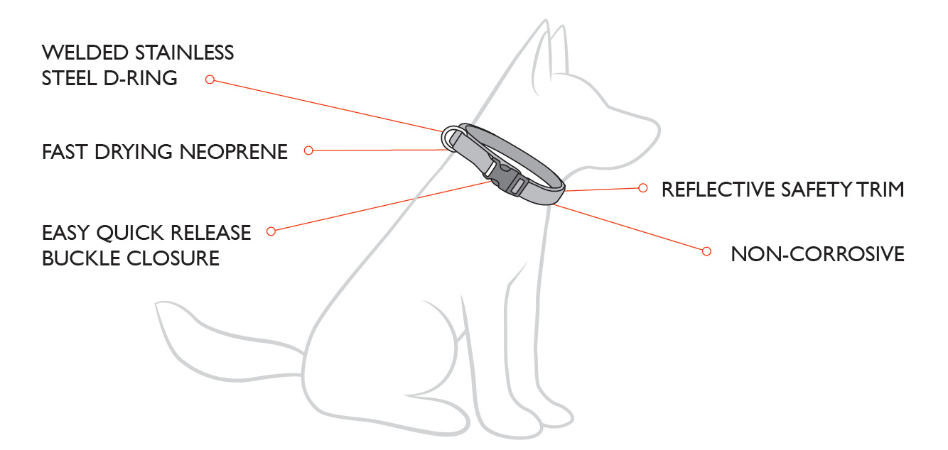 Neo Dog Collars