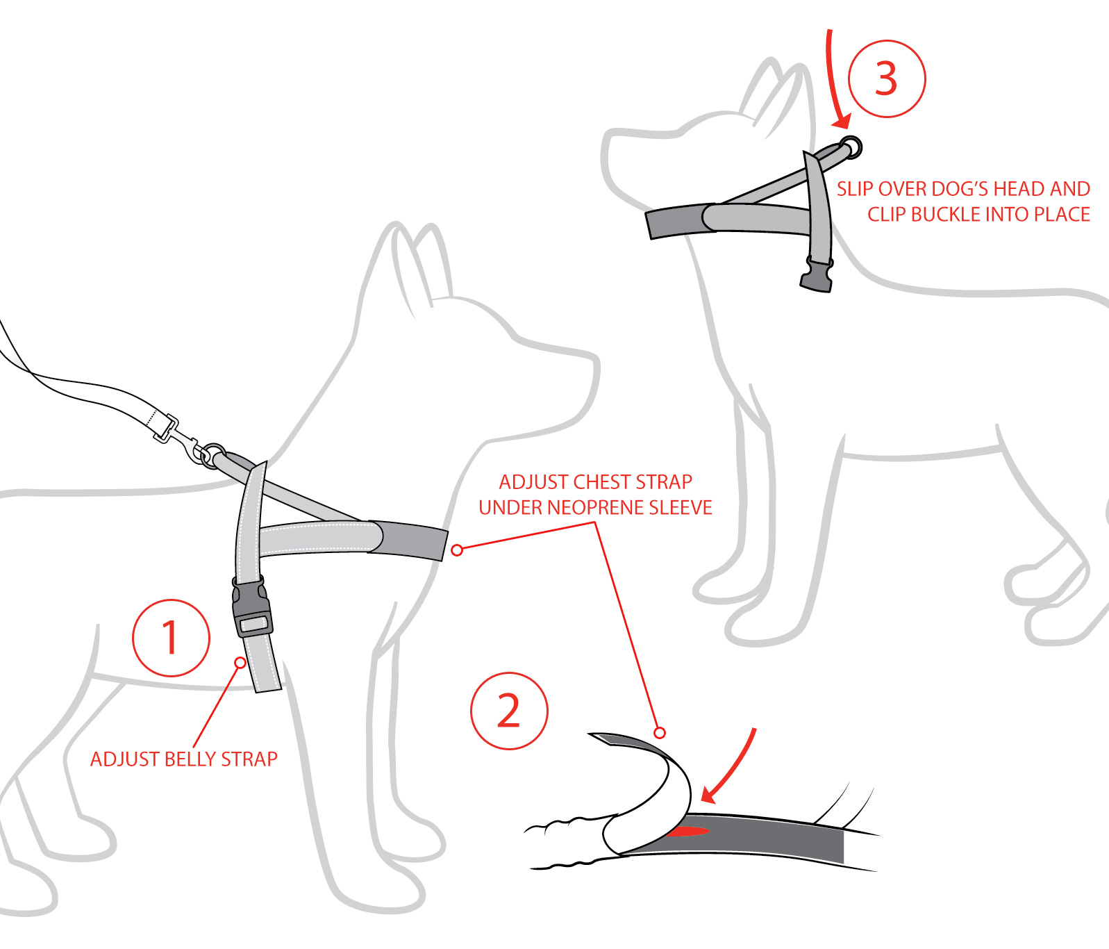 EzyDog Quickfit Harness