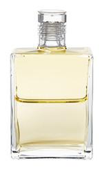 B51 - Kuthumi Pale Yellow / Pale Yellow