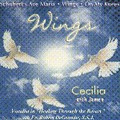 WINGS by Fr. Robert De Grandis