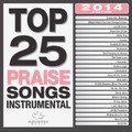 TOP 25 PRAISE SONGS -INSTRUMENTAL - 2014