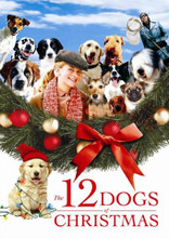 12 DOGS OF CHRISTMAS -DVD