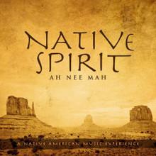 NATIVE SPIRIT by David Arkenstone