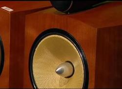 Speaker woofer
