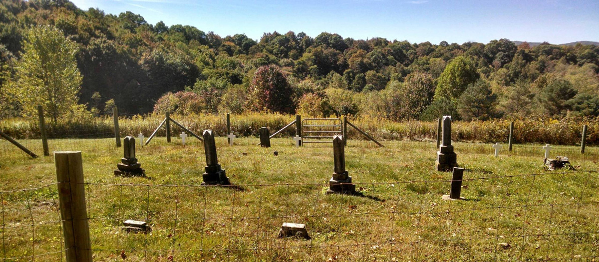 graveyardltd-site.jpg