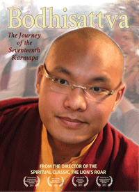 Bodhisattva: The Journey of the Seventeenth Karmapa DVD