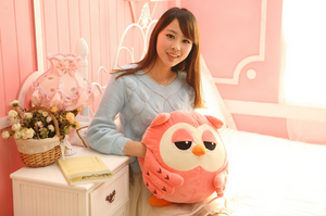 Cute Owl 3in1 Cushion and Thermal Blanket
