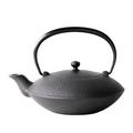 Oigen Tetsubin tea pot E-159 flat model