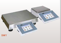 BWY Precision balances