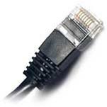 Hear Technologies CAT6 Cable Front @ ZenProAudio.com