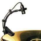 Audix ADX20i-P Detail at ZenProAudio.com